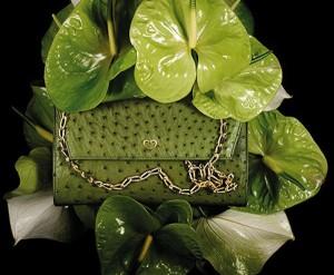 tracollina stampa struzzo verde mamme a spillo