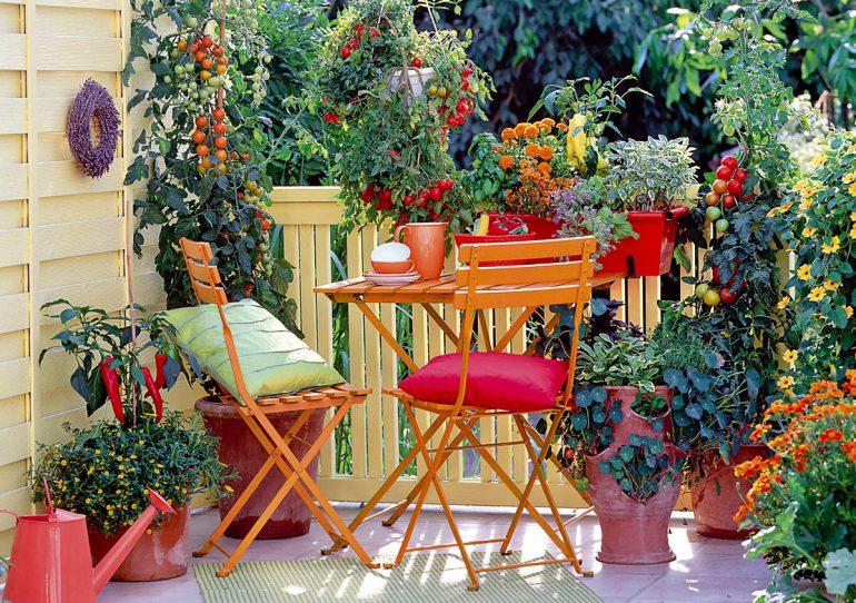 L\'orto in balcone: come realizzarne uno salvaspazio