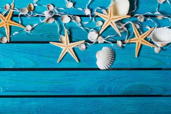 Decorazioni fai da te con le conchiglie 3 idee semplici e low cost - Decorazioni marine fai da te ...