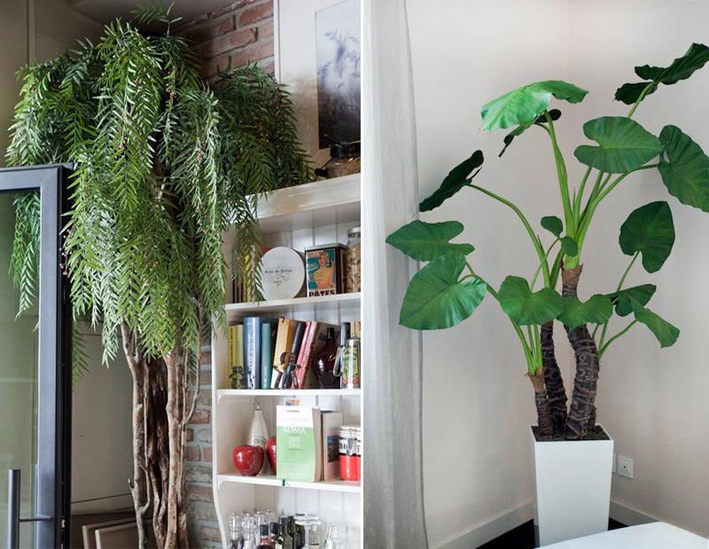 piante-artificiali
