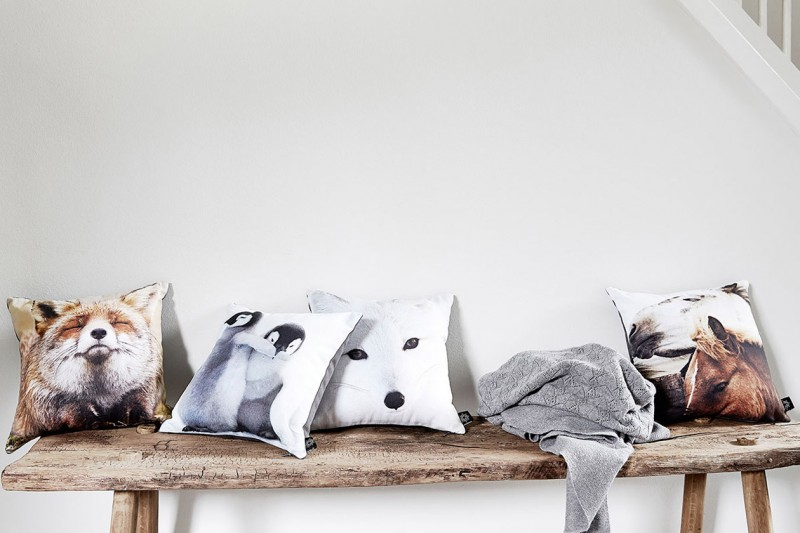 kids-cushions-animals-by-nord-cushions-culow7-800x533