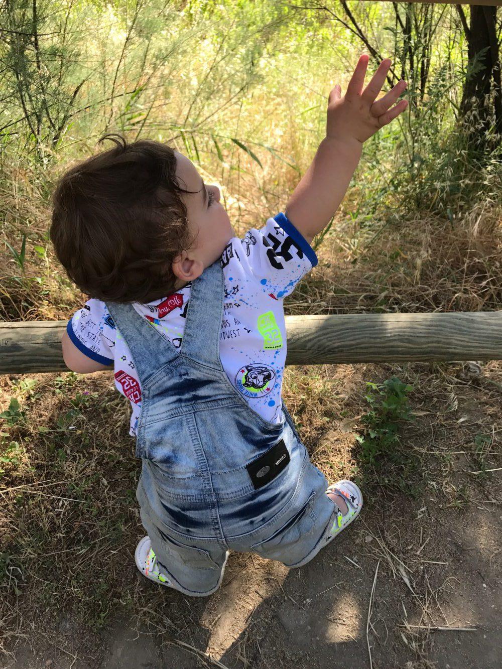 Quando Inizia A Gattonare Neonato come stimolare il bambino a camminare? | falcotto - mamme a